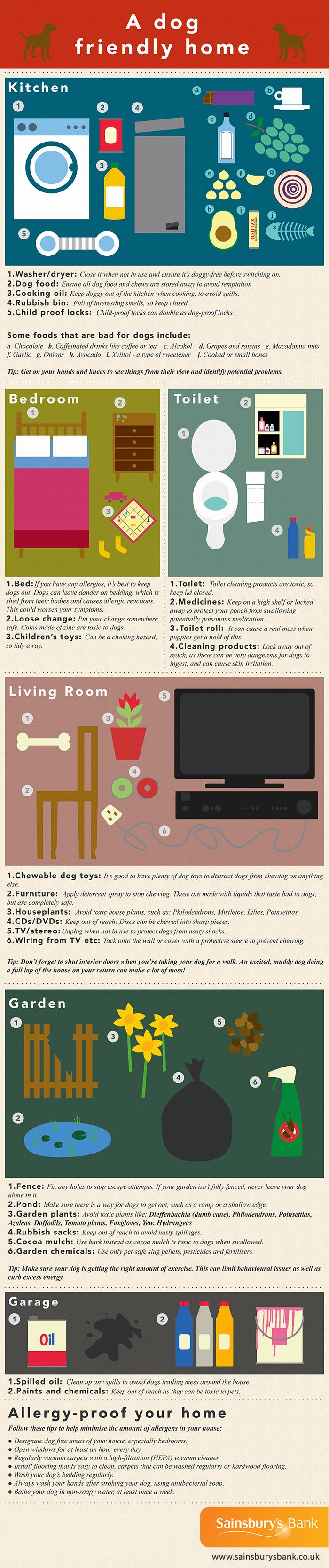 a-dog-friendly-home