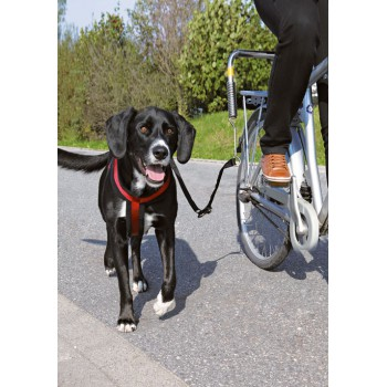 biker set for large dogs