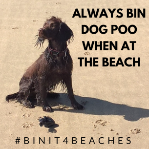 Dog poo on beaches