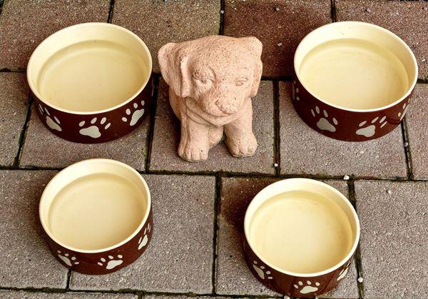 Stoneware Dog Bowls