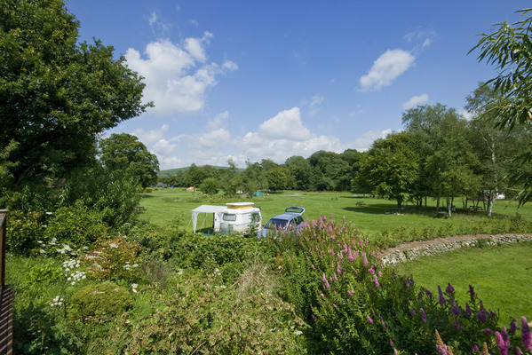 Dog Friendly Camp site in Tavistock