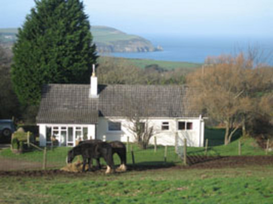 Dog Friendly Cottages in Wales