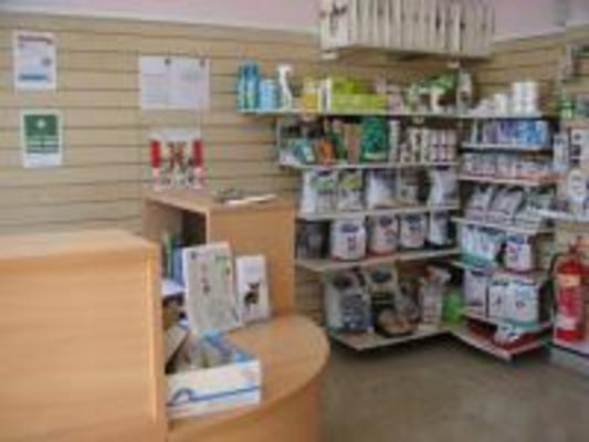 Pet Health Partnership In Poole Dorset Veterinary Practices