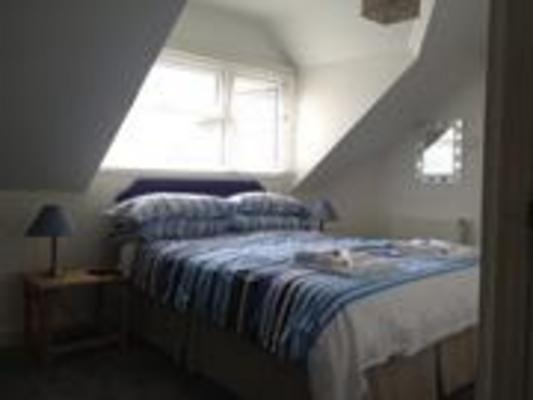 dog friendly apartments in Woolacombe
