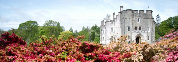 Picton Castle & Gardens - Dog Friendly Attraction