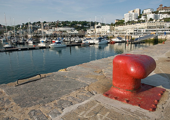 dog friendly guesthouse in Torquay