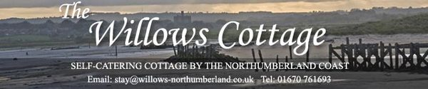 dog friendly accommodation in Alnwick Northumberland