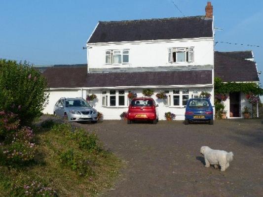 Brynawel Farm In Swansea Swansea B Amp B S Guest Houses