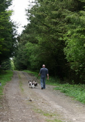 Dog Friendly Camp sites