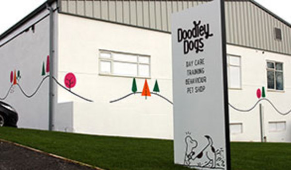 Dog Day Care in Storrington
