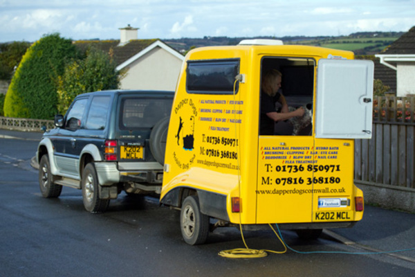 f3c70a0672 Dapper Dogs - Dog Groomer in Hayle