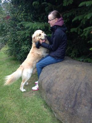 Dog Home Stay in Kinross