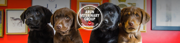 Arun Veterinary Group Ltd