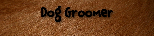A1 Dog Grooming