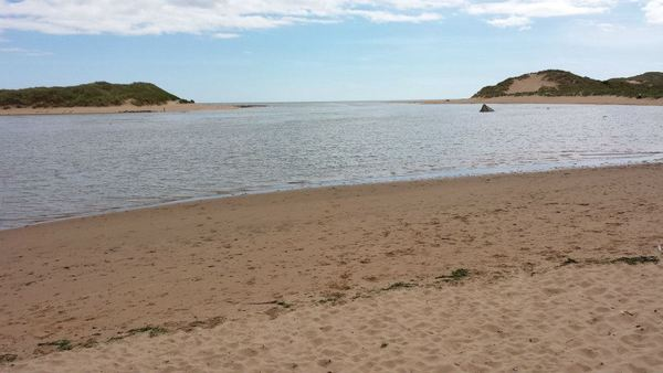Dog Friendly Beach in Newburgh