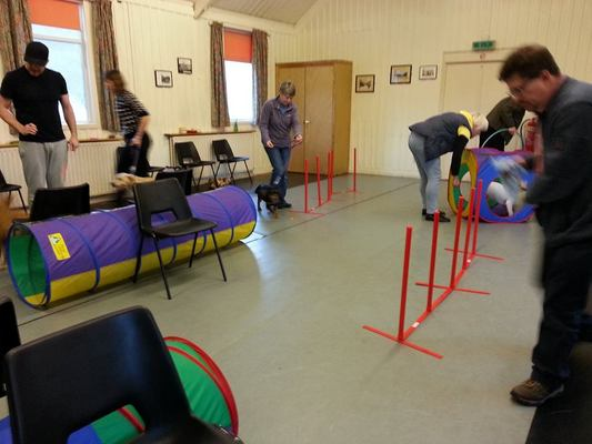 Dog Training in Skipton