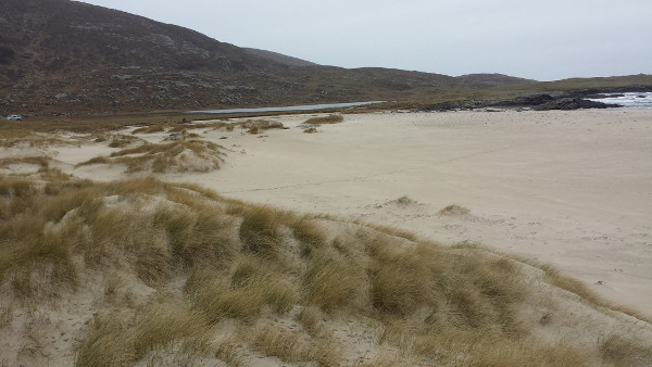 Dog Friendly Beach in Western Isles