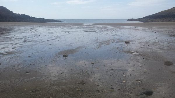Dog Friendly Beach in Llanfaelog