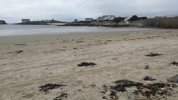 Dog Friendly Beach in Rhoscolyn
