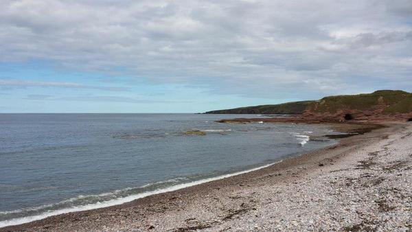 Dog Friendly Beach in Aberdeenshire