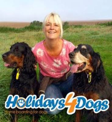 Holidays4Dogs - Somerset, Bristol and Dorset