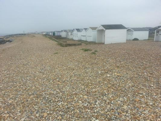 Dog Friendly Beach in West Sussex