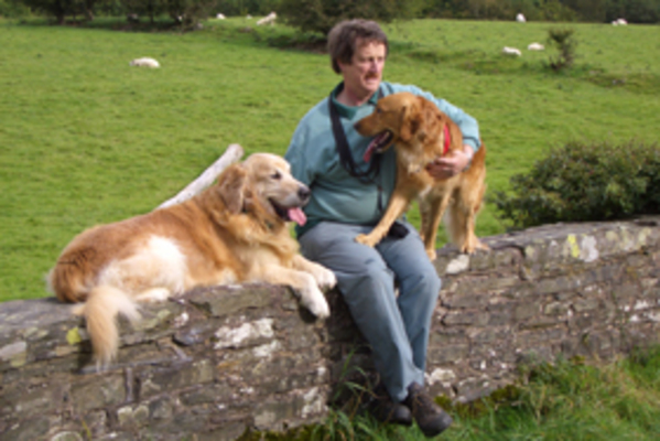 Dog Friendly Cottages in Cumbria