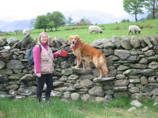 Dog Friendly Accommodation in Keswick