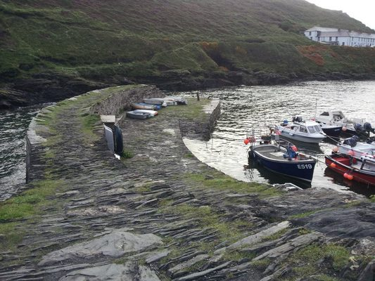 Guide Dog Rehoming >> Boscastle in Otterham, Cornwall | Dog Friendly Beaches