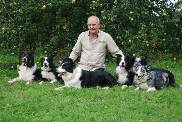 Dog Trainer in Cheshire