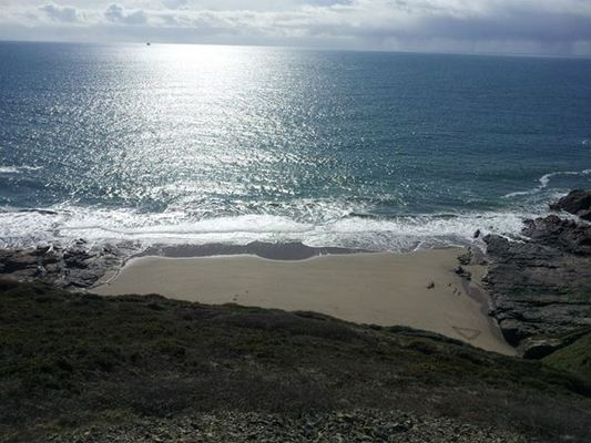 Dog Friendly Beach in Porthleven