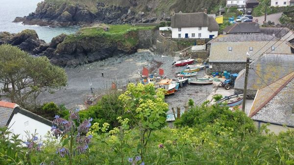 Dog Friendly Beach in Cadgwith