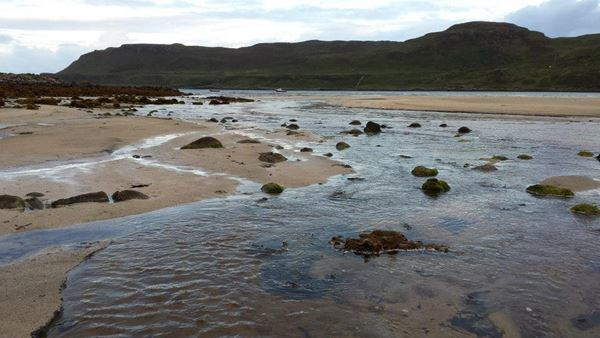 Dog Friendly Beach in Dervaig
