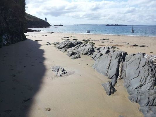 Dog Friendly Beach in St Mawes