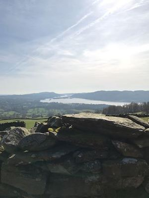 Dog Friendly Cottages in Windermere