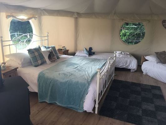 Dog Friendly Camp site in Hampshire