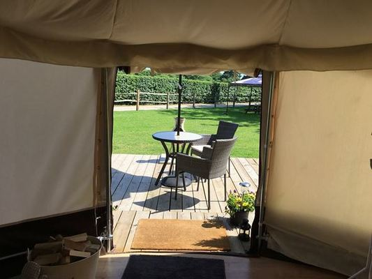 Dog Friendly Camping Hampshire