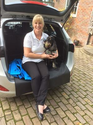 Dog Home Stay in Buckinghamshire