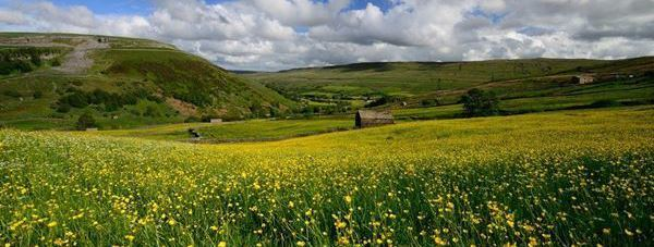 Swaledale Country Holidays
