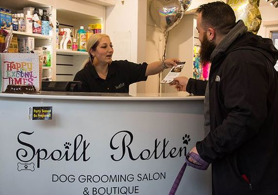 Dog Groomer in Chalfont St Peter