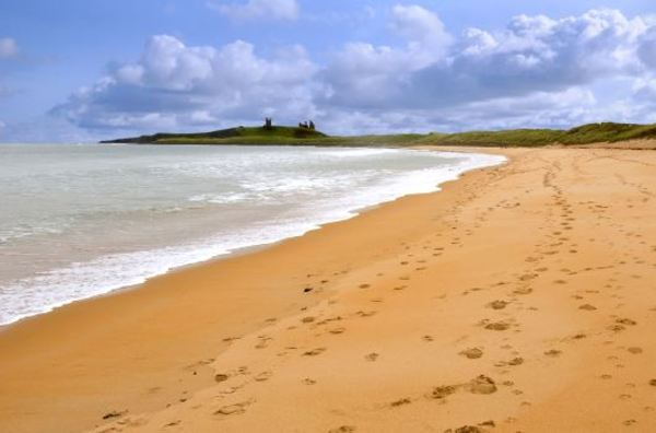 Dog Friendly Holidays in Northumberland