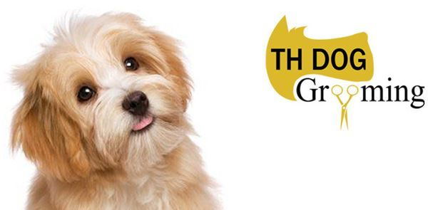 TH Dog Grooming