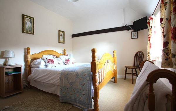 Dog Friendly b&b in King's Lynn