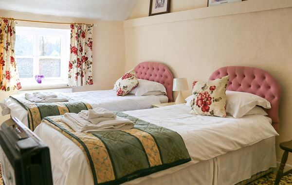 Dog Friendly bed and breakfast in Norfolk
