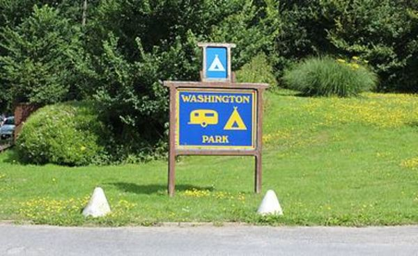 Dog Friendly Camping West Sussex