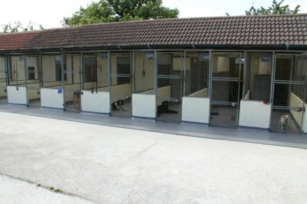 Latney's Boarding Kennels and Cattery