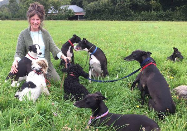 The Devon Dog Lady
