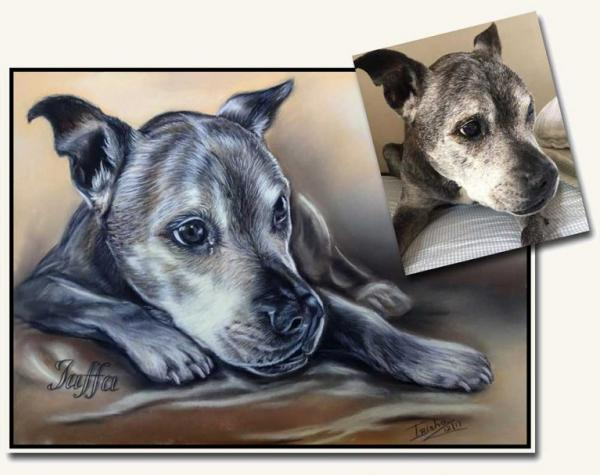 Irisha's Pet Portraits