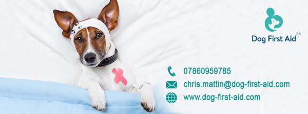 Dog First Aid Ltd - Kent