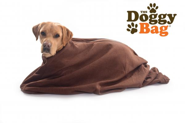 Doggy Bag & Towels
